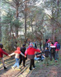 Dalle parrocchie: San Vero Milis – Albero di Natale nella pineta di Is Arenas